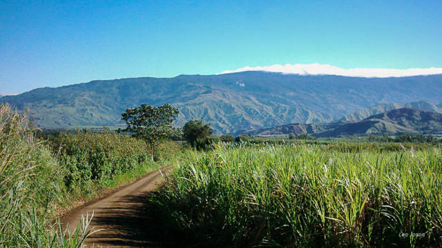 Bukidnon mountains-2